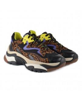 Кроссовки Ash 'Addict' с леопардовым принтом