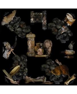Платок Klements «Естествознание», 140x140
