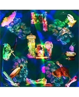 Платок Klements 'Natural History Rainbow', 140x140, шёлковый шифон